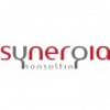 SYNERGIA KONSULTING